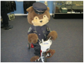 CEOC Bear Riding Tricycle