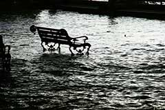flooded area with park bench